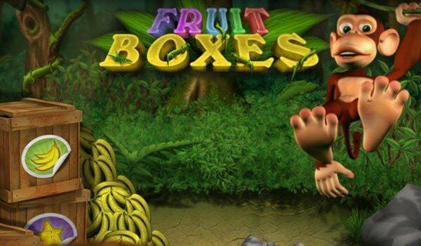 Φρουτάκι Fruit Boxes