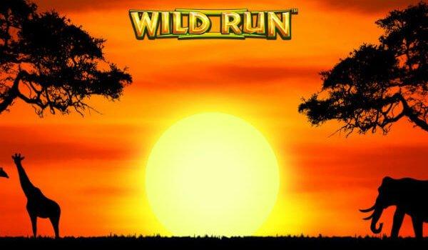 φρουτάκι Wild Run της NextGen