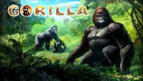 φρουτάκι Gorilla