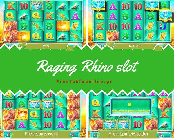 χαρακτηριστικά στο φρουτάκι Raging Rhino