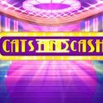 Φρουτάκι Cats and Cash της Play'n GO