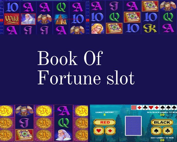 συμβολο wild και scatter στο book of fortune slot