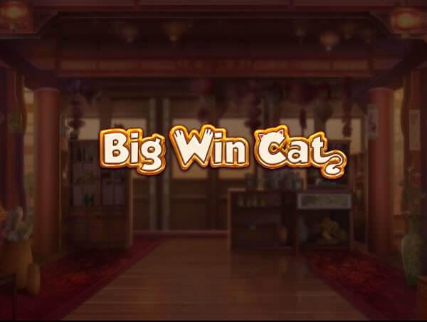 Φρουτάκι Big win cat