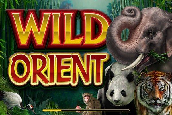 Φρουτάκια με ζώα: Φρουτάκι Wild Orient