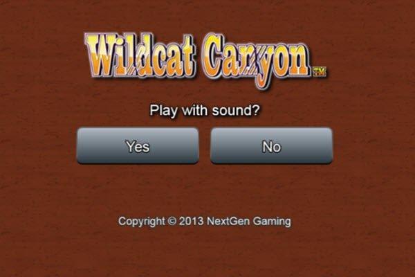 φρουτάκι Wild cat canyon