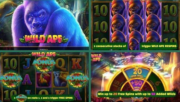 λειτουργιες στο φρουτακι Wild Ape
