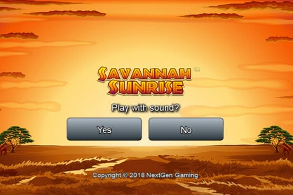 Savannah sunrise της NextGen